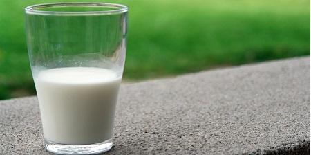 microrganismi che possono contaminare il latte