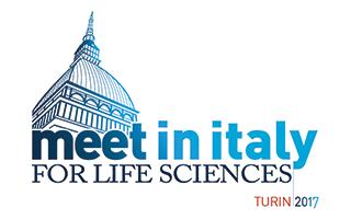 Meet in Italy