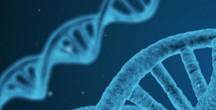 Nuovo test per i pazienti leucemici