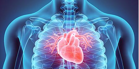 Un pacemaker temporaneo riassorbibile dall'organismo